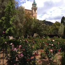 Palma Mallorca + Valldemossa (PRIVADO)