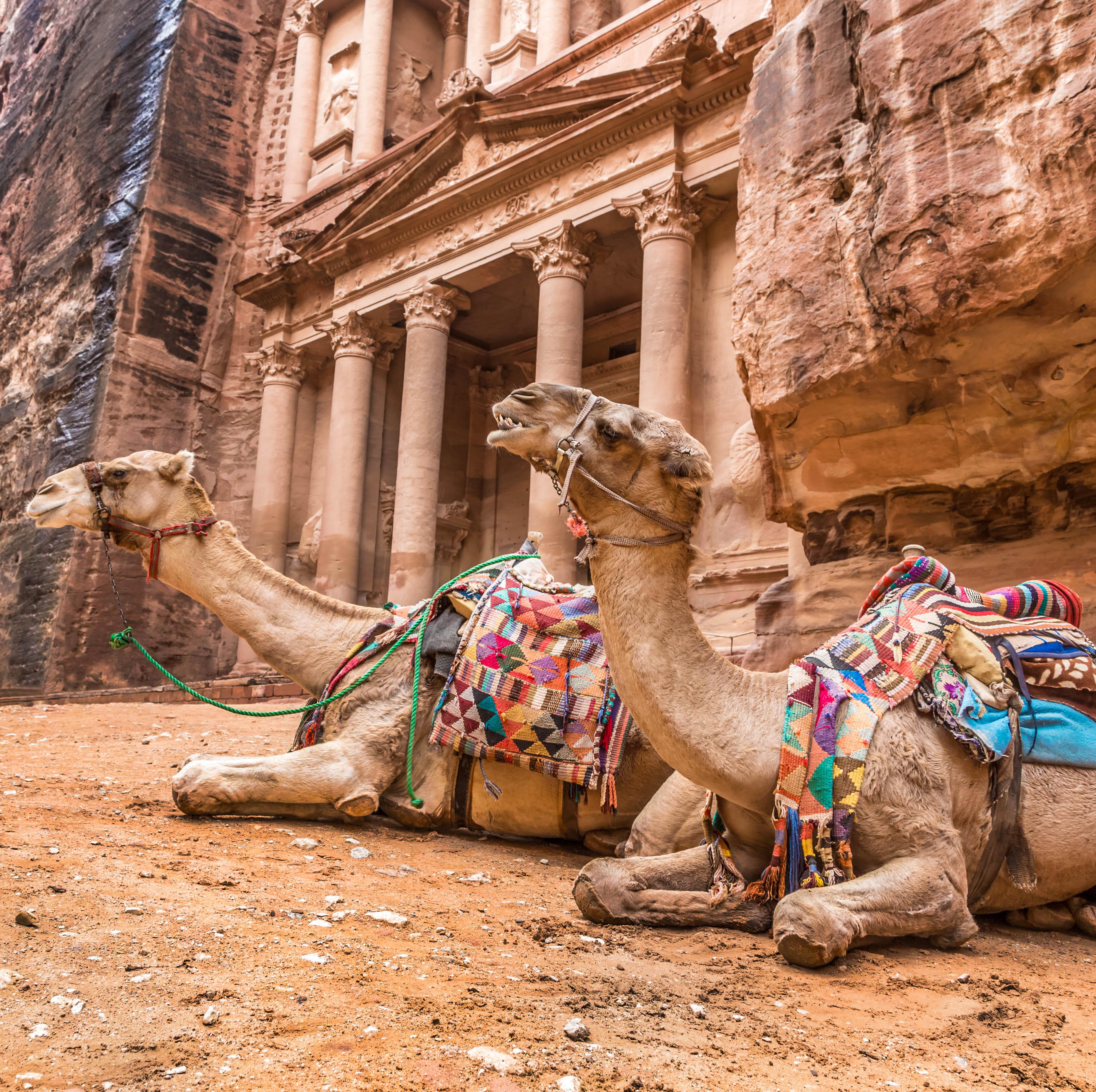 Petra (desde Aqaba)