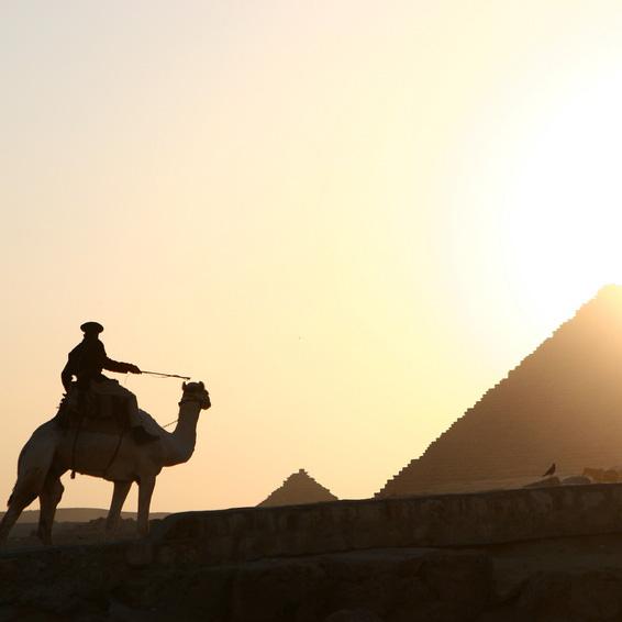 Museo Egipcio y Pirámides